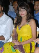 Actress Sneha Ullal Hot Photos glamour images